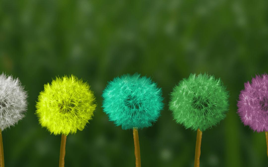 Health Information Week – Mindfulness for Health